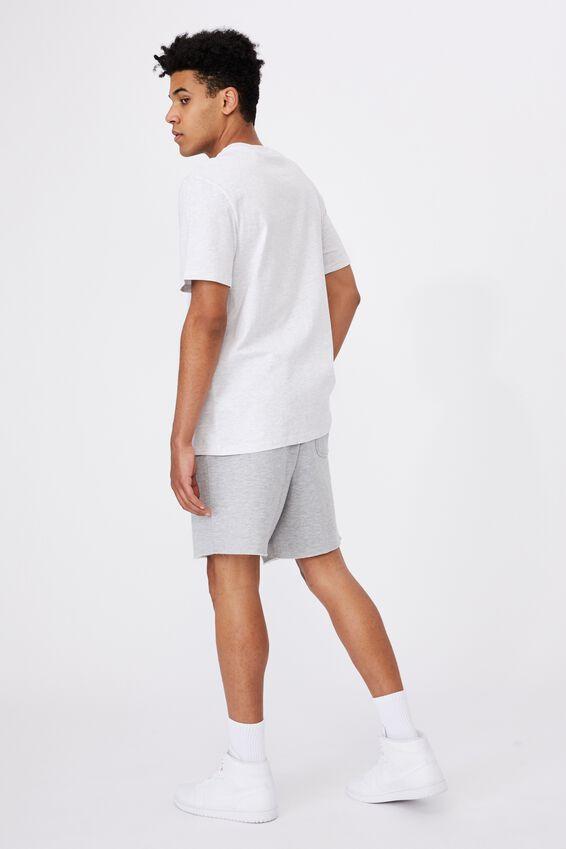 Regular Graphic T Shirt, SILVER MARLE/AUSTIN TEXAS