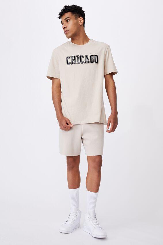 Regular Graphic T Shirt, BEIGE/CHICAGO
