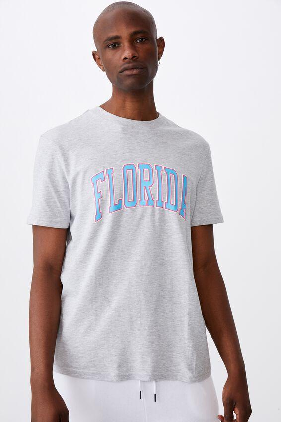 Regular Graphic T Shirt, GREY MARLE/FLORIDA