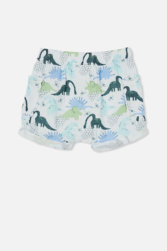Jordan Shorts, VANILLA/PETROL TEAL DINO HIVE