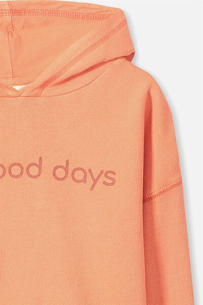 Liam Hoodie, WASHED BERRYLICIOUS/ALL GOOD DAYS