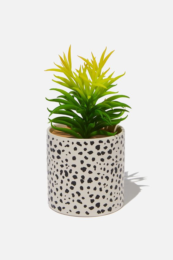 Shaped Planter With Plant, BLACK SPOT