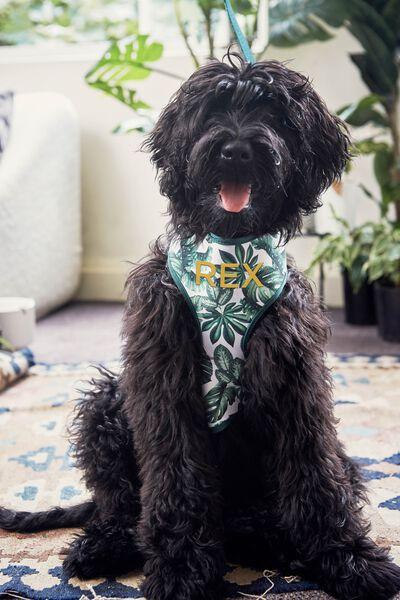 Personalised Pet Harness, FOLIAGE - L