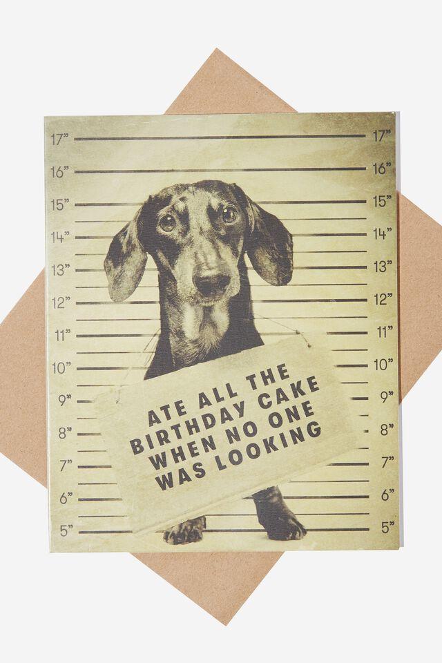 Nice Birthday Card, ATE THE CAKE DOG!