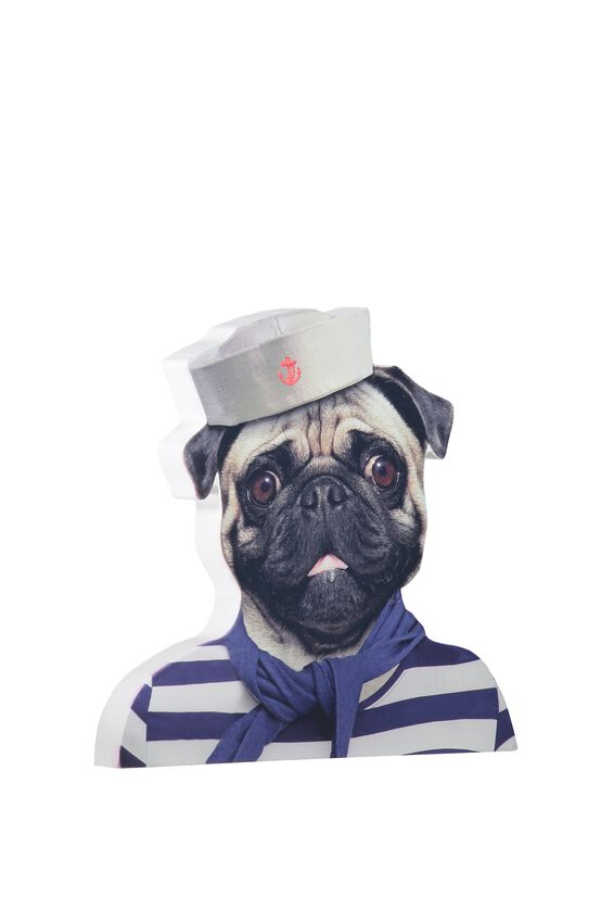 Printed Sign, CAPTAIN RODGER THE PUG