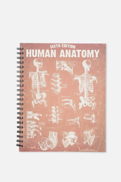 Large Campus Notebook - 240 Pages, HUMAN SKELETON