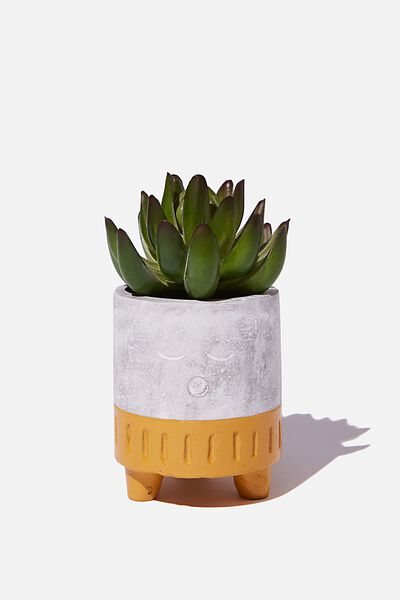 Tiny Shaped Planter, CEMENT SLEEPY
