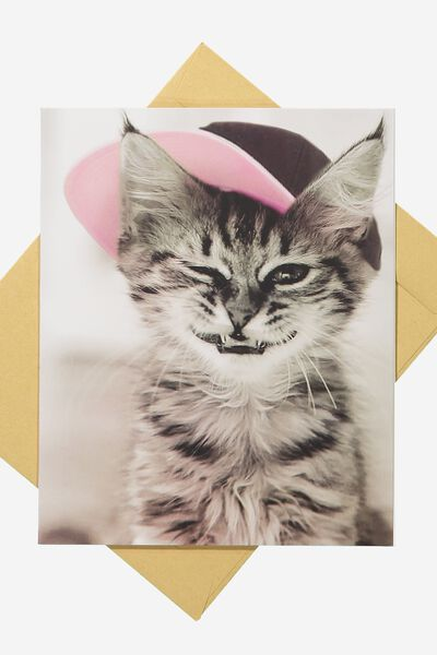 Blank Card, HAT CAT