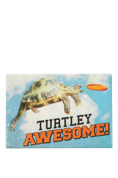 Quirky Magnets, AN TURTLE