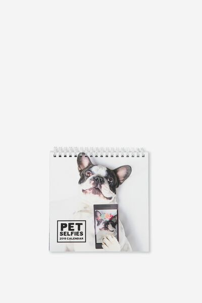 2019 Flip Desk Calendar, PET SELFIES
