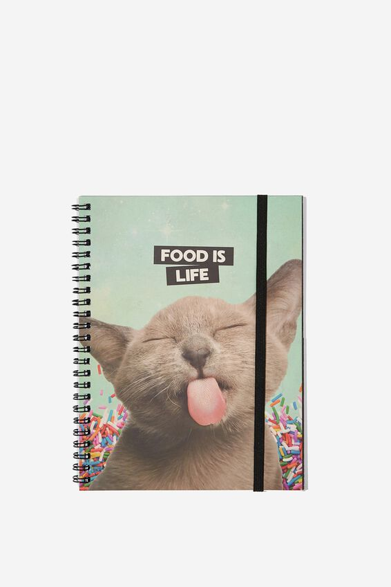 Small Spinout Notebook - V, CAT FOOD IS LIFE