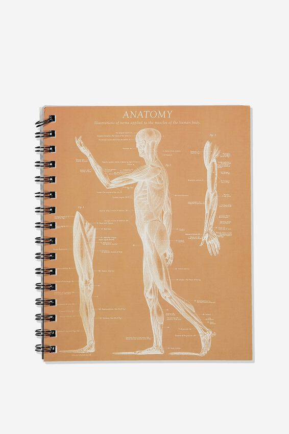 A5 Campus Notebook Recycled, SKELETON SIDE ANATOMY