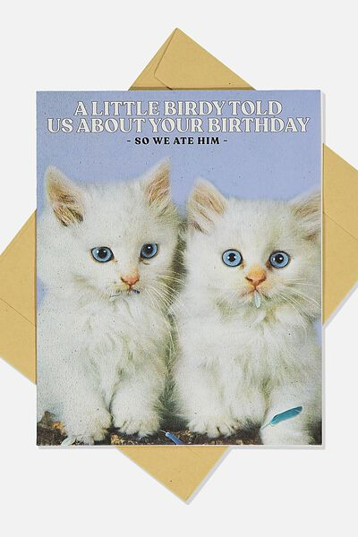 Funny Birthday Card, A LITTLE BIRDY TOLD US KITTENS