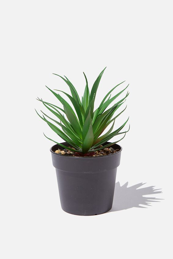 Faux Real - Small Plant, SUCCULENT