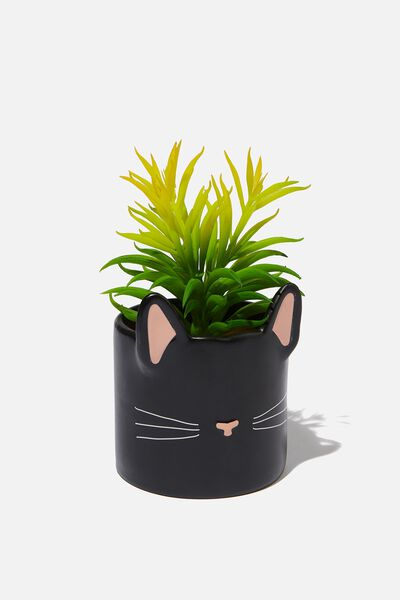 Shaped Planter With Plant, BLACK CAT