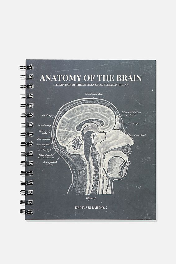A5 Campus Notebook Recycled, ANATOMY OF THE  BRAIN