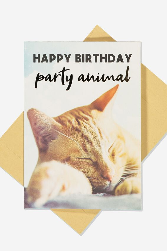 Funny Birthday Card, SMALL SLEEPING CAT PARTY ANIMAL