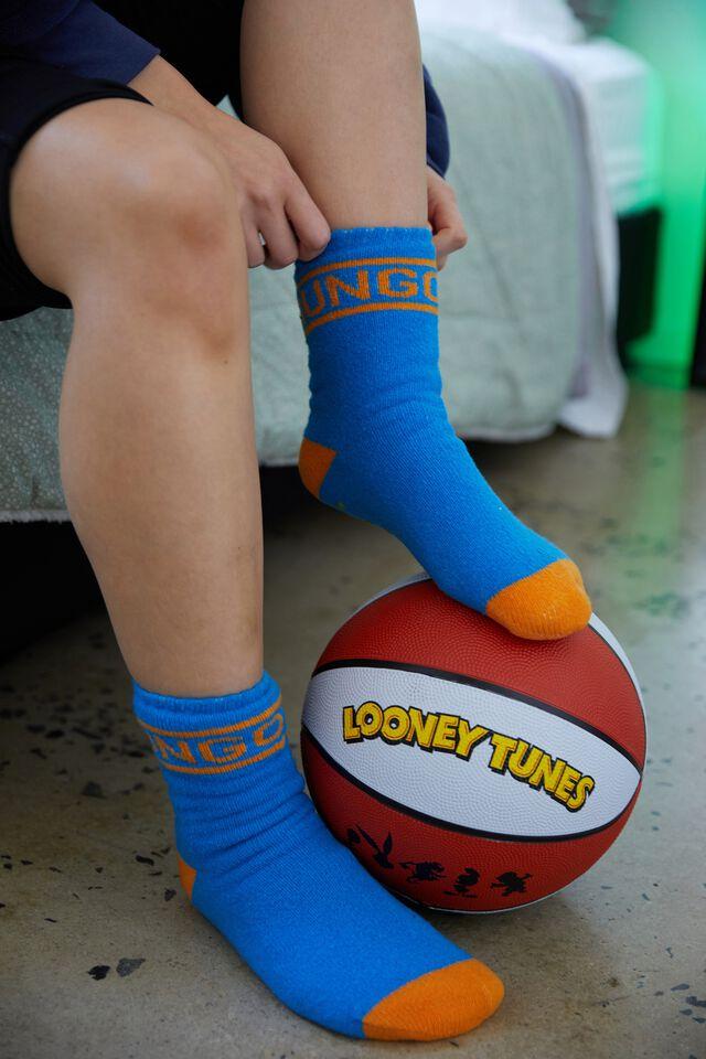 Basketball Size 7, LCN WB LOONEY TUNES