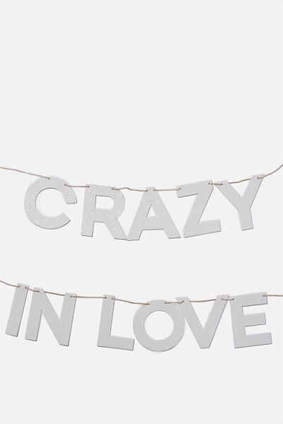 Quote Bunting, WHITE IRRIDESCENT  CRAZY IN LOVE