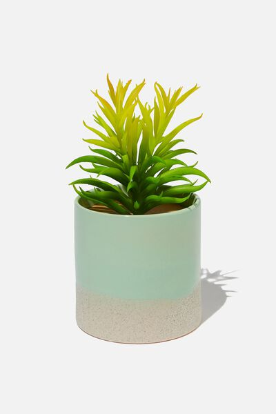 Shaped Planter With Plant, GREEN DUO