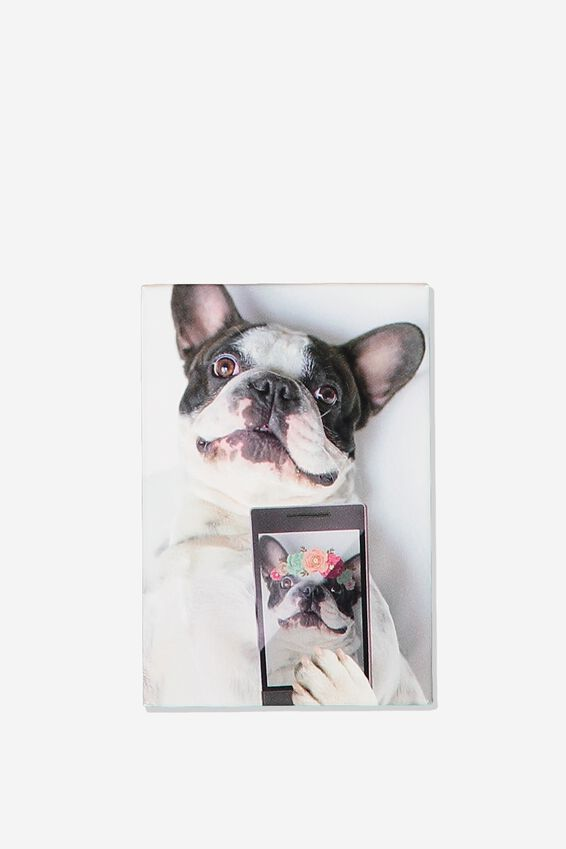 Quirky Magnets, FRENCHIE SELFIE