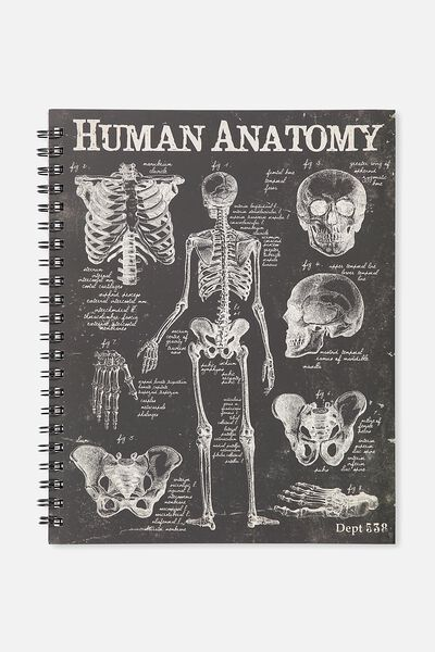 Large Campus Notebook - 240 Pages, HUMAN ANATOMY