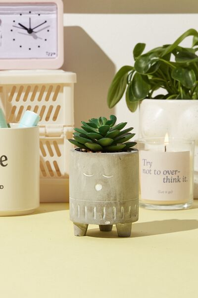 Tiny Planter With Plant, CONCRETE SLEEPY FACE