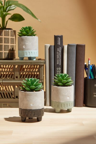 Tiny Planter With Plant, CEMENT & BLACK SLEEPY FACE