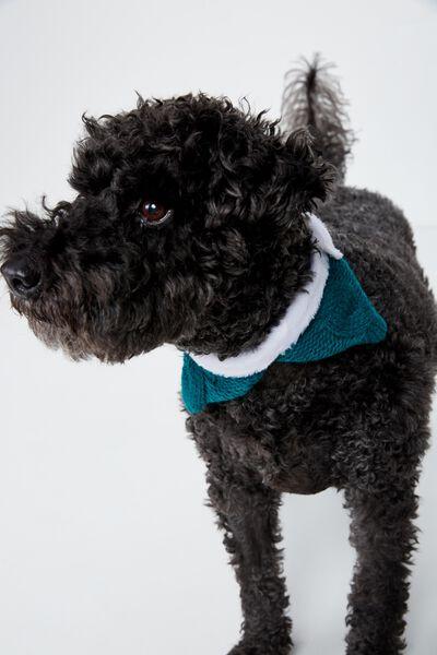 Pet Knitted Collar, FESTIVE PET