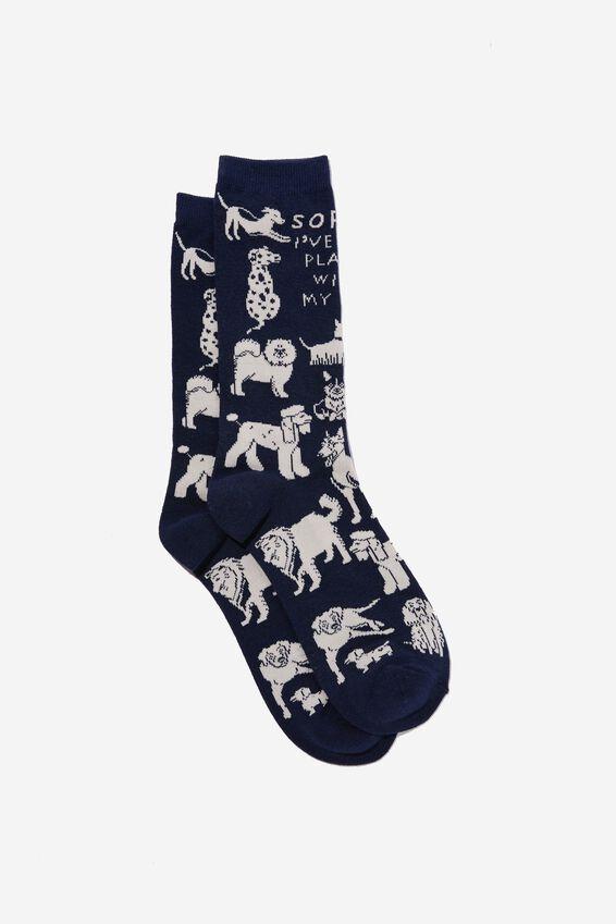 Socks, PLANS WITH MY DOG NAVY