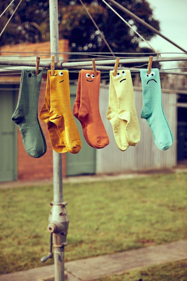 Box Of Socks, FACES