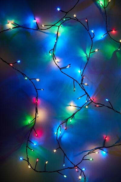 Seed Lights, BLACK WIRE MULTI LIGHT