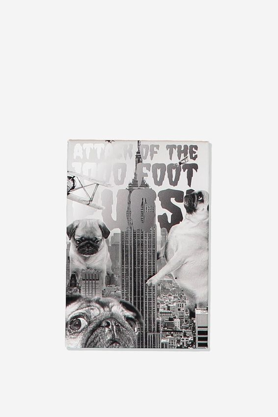 Quirky Magnets, 1000FT PUGS