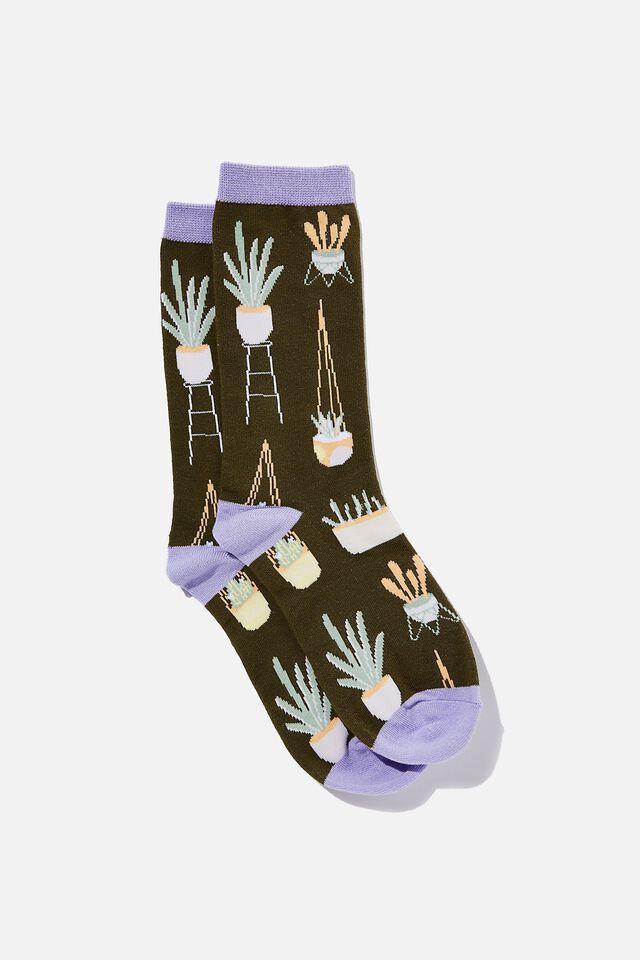 Socks, HOUSE PLANTS
