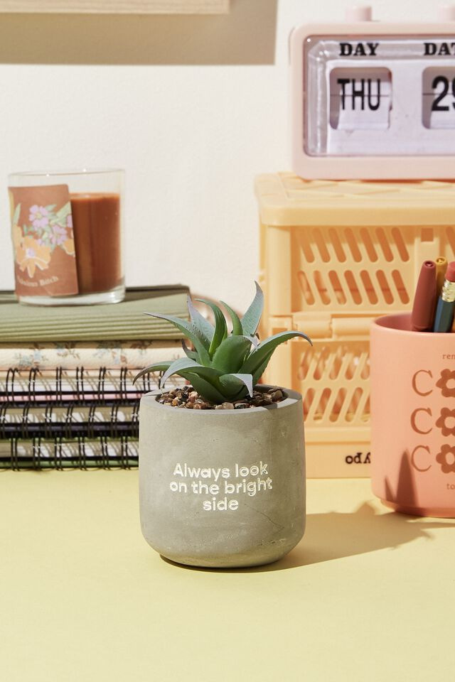 Tiny Planter With Plant, CONCRETE BRIGHT SIDE