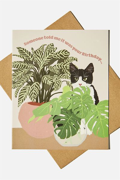 Nice Birthday Card, CAT PLANTS HIDE ILLUSTRATION