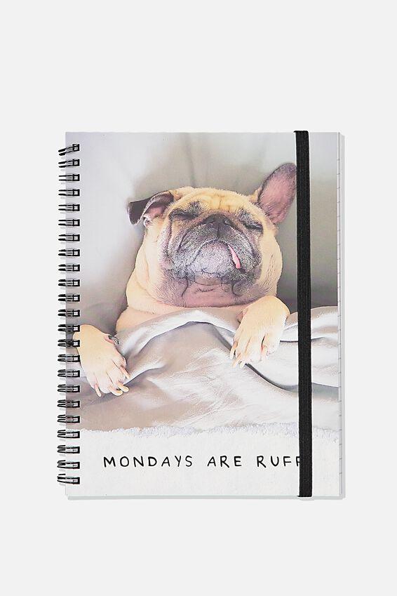 Small Spinout Notebook, MONDAYS