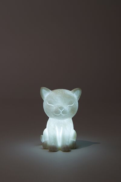 Tiny Novelty Light, CAT