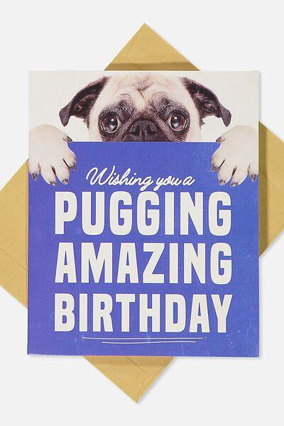 Premium Funny Birthday Card, POP UP PUG