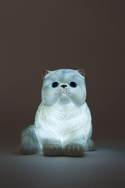 Small Novelty Light, CLAUDE VAN CAT