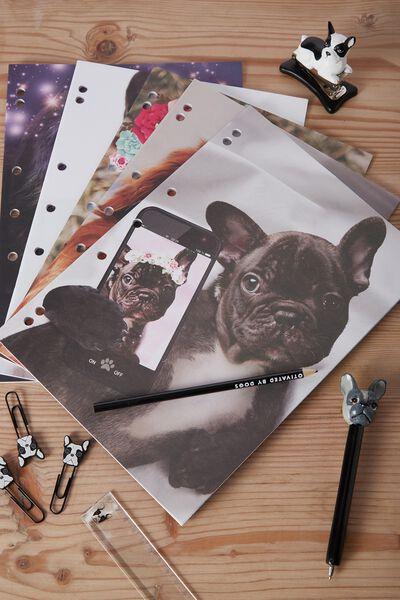 Work It Out Notebook pk 5, PET SELFIES
