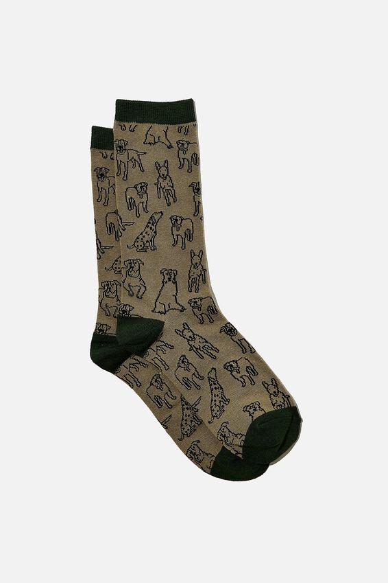 Socks, SPOT THE DOG