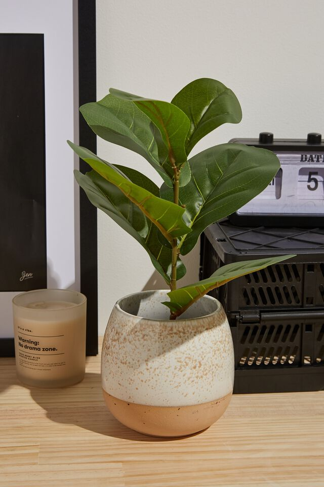 Faux Real - Mid Sized Plant, FIDDLE LEAF FIG