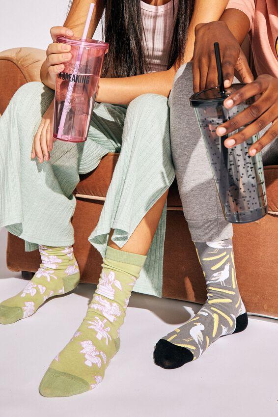 Socks, POT PLANTS
