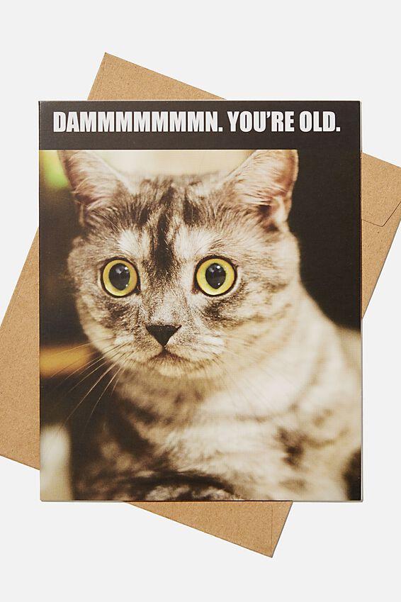 Funny Birthday Card, DAMN YOURE OLD CAT MEME