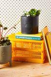 Midi Shaped Planter, MATTE BLACK CIRCLES