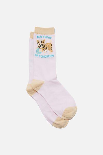 Socks, NOT TODAY CAT