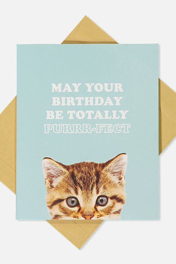 Premium Funny Birthday Card, POP UP KITTY