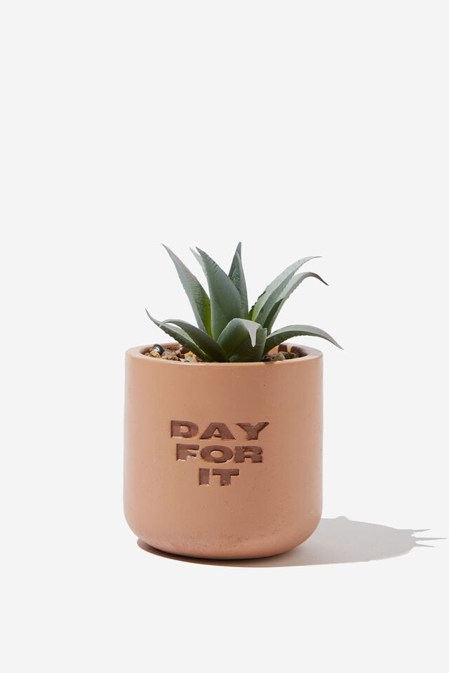 Tiny Planter With Plant, TERRACOTTA DAY FOR IT