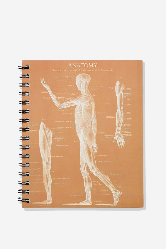 A5 Campus Notebook - Rec, SKELETON SIDE ANATOMY